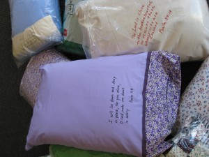 FBC Pillows 2